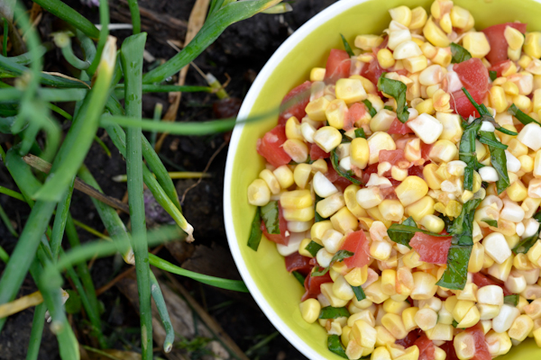 basil sauce grilled corn tomato salad with basil oil recipes dishmaps ...