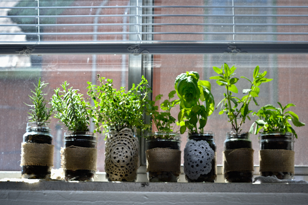 DIY Indoor Herb Garden // peace. love. quinoa