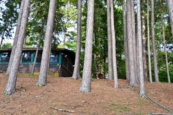 MN Cabin Cross Lake