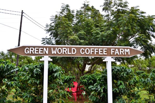 Green World Coffee Farm