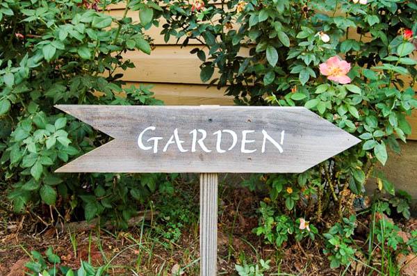 Garden Etsy