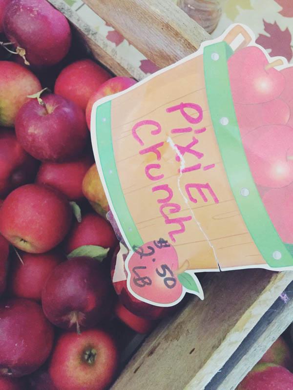 Quednow's Apples