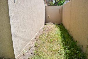 Garden Beds Weeds Allure 2