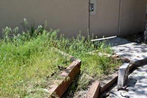 Garden Beds Weeds Allure 3