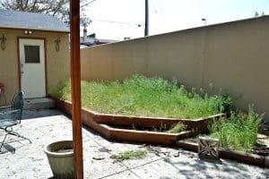 Garden Beds Weeds Allure