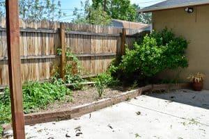 Garden Beds Weeds Allure 4