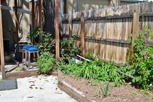 Garden Beds Weeds Allure 5